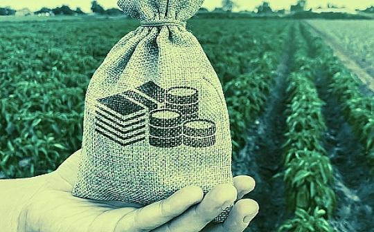 红杉资本:将通过重塑投资结构 增加对加密资产的投资