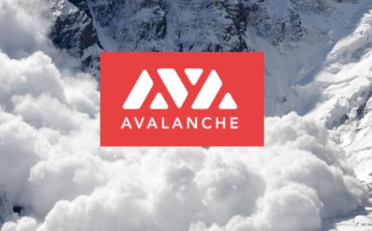 以雪崩之势改造世界 纵览  Avalanche 生态